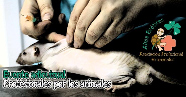 Profesionales por los animales portada evento copia